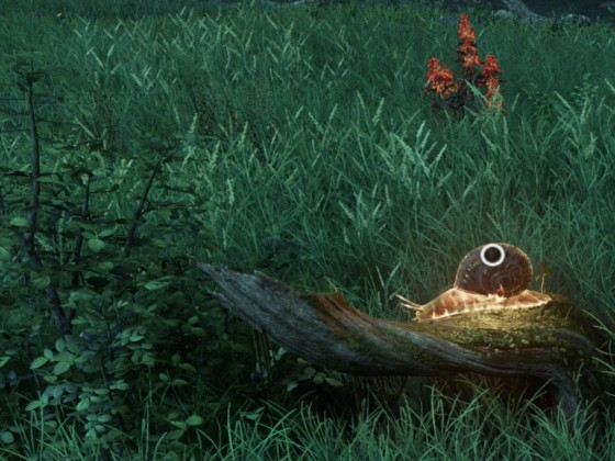 Salamanderschnecke